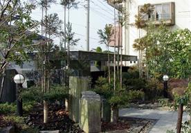 ダイスギのある落ち着いた庭のイメージ